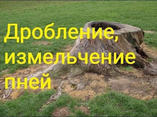 Дробление измельчение пней Новосибирск