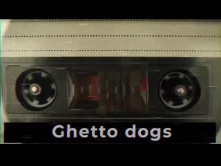 Концерт легендарной группы ghetto dogs 3