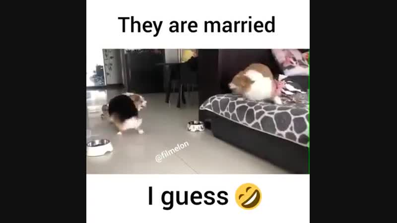 Ils sont mariés.