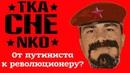 Разочаровался в путинской России? [что произошло после задержания]