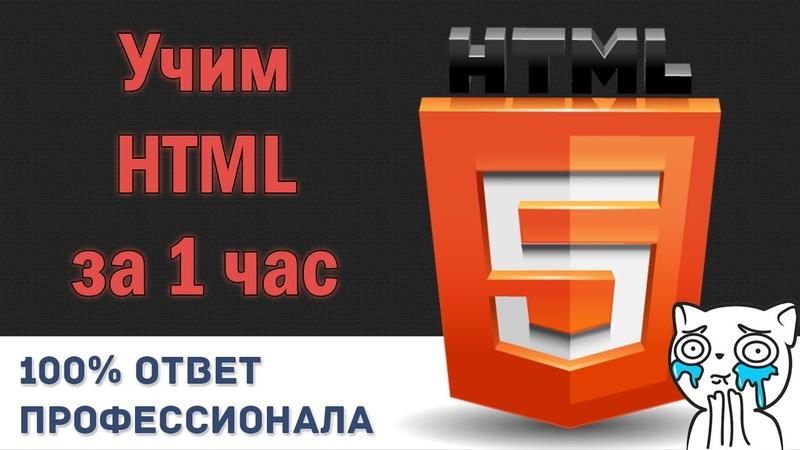 Учим HTML за 1 Час От Профессионала