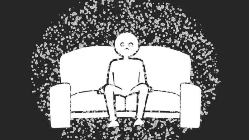 Пылевые клещи и аллергическая реакция_ как это связано
