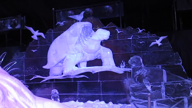 Ледяные скульптуры . Галапагосские острова и Чарльз Дарвин