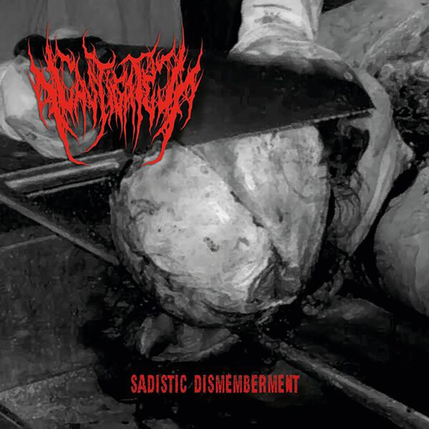 Castigated - Sadistic Dismemberment [single] (2018)