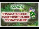 Испанский язык с нуля Урок 5 Артикли №3 - согласование с существительными (