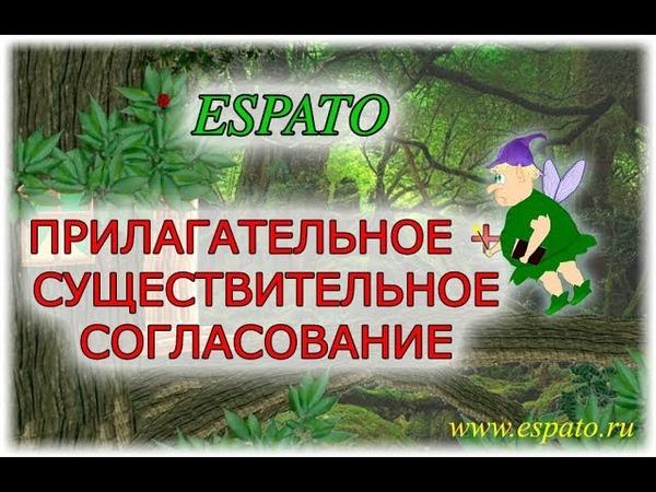 Испанский язык с нуля Урок 5 Артикли №3 - согласование с существительными (www.espato.ru)
