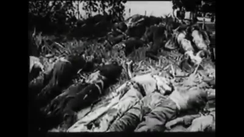 Число заключенных тюрем, убитых НКВД на Западной Украине в период с 22 по 30 июня 1941 г