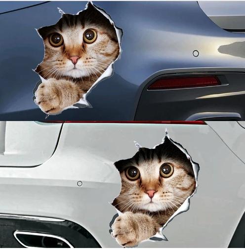 Наклейка с котом