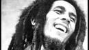 Bob Marley-Don't worry be happy