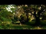 Ренуар. Последняя любовь - Renoir (2012)