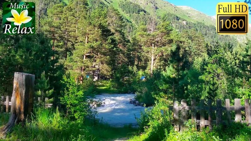 Звуки Природы Река Лес Горы 3 часа Спокойного Сна и Релаксации