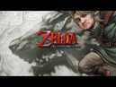 [18 ] Шон играет в The Legend of Zelda: Twilight Princess (Wii, 2006)