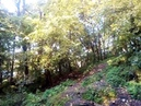 Лесной водопад. Пущино