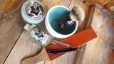 381 wade &amp butcher, crema da barba arzachena extro', kent h12, eau de toilette arzachena #бритьё,