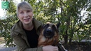 «Собакам все равно, под каким флагом случилась беда» приют «ПИФ» в Донецке спасает жизни