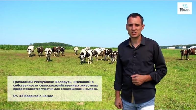 Заработать в Беларуси. Проект Честные деньги. Серия 2