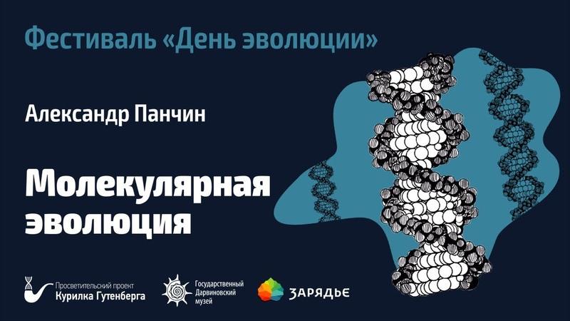 Фестиваль День эволюции Молекулярная эволюция Александр Панчин