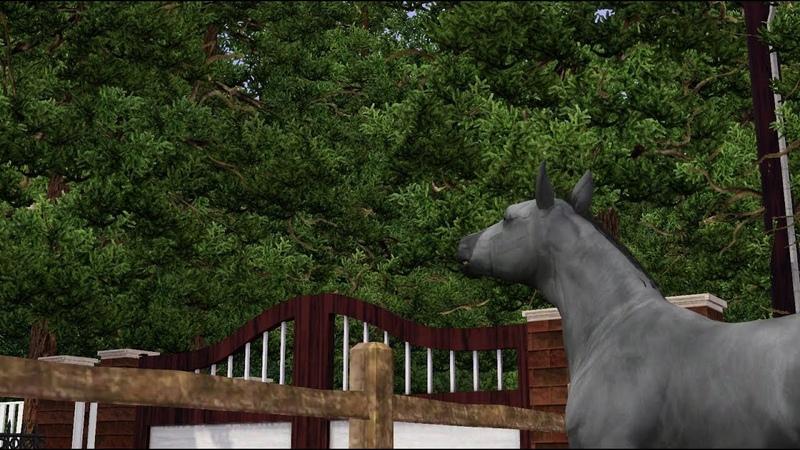 Сериал Дикая жизнь 4 I Sims 3 horse