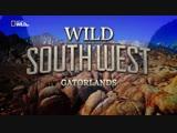 Прекрасная Америка Дикий Юго-Запад. Заповедник Гаторленд Wild Southwest. Gatorlands