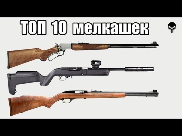 Топ 10 самых популярных малокалиберных винтовок .22 LR