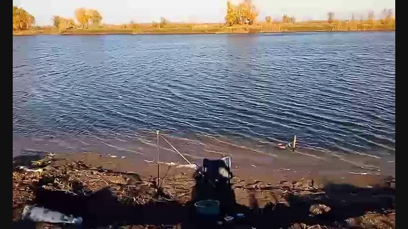 Закрытие рыболовного сезона «фестиваль фидерной ловли БРООИР »