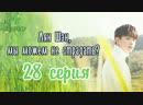 Fsg Reborn Лян Шэн мы можем не страдать All Out Of Love 28 серия