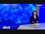 Кубань и Адыгея готовятся к ежегодному выпуску мальков русского осетра в Азовское море
