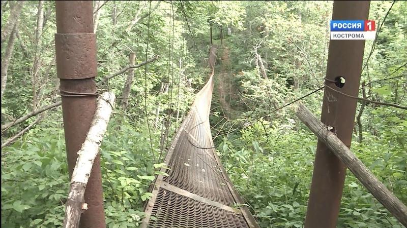 ЧП в Островском районе: обрушился мост, 3 человека получили серьёзные травмы