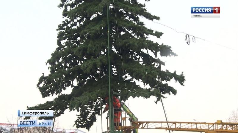В Симферополе заканчивается монтаж главной ёлки