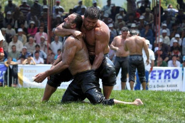 Ухвати врага за яйца: киркпинар, национальный турецкий вид спорта Киркпинар турецкая борьба, в которой на поле сходятся здоровенные мужики, выкручивают друг другу яйца и суют пальцы в задницу.