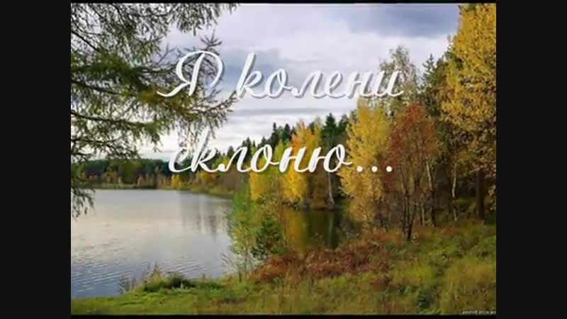Ксения Лапицкая — Я колени склоню...