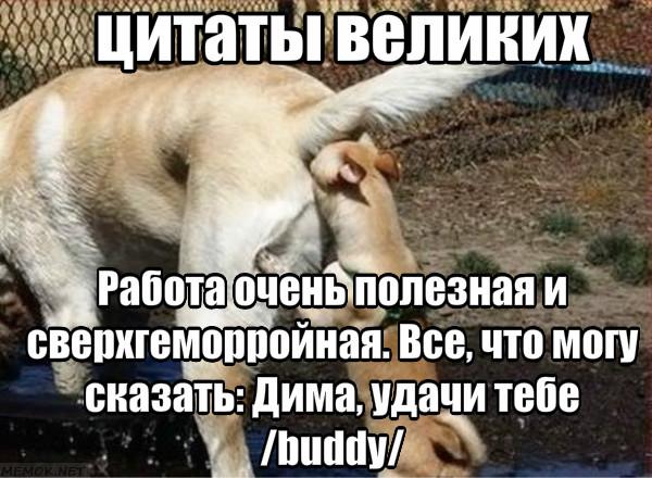 https://pp.userapi.com/c852120/v852120513/72de1/JupWKk5nQsk.jpg
