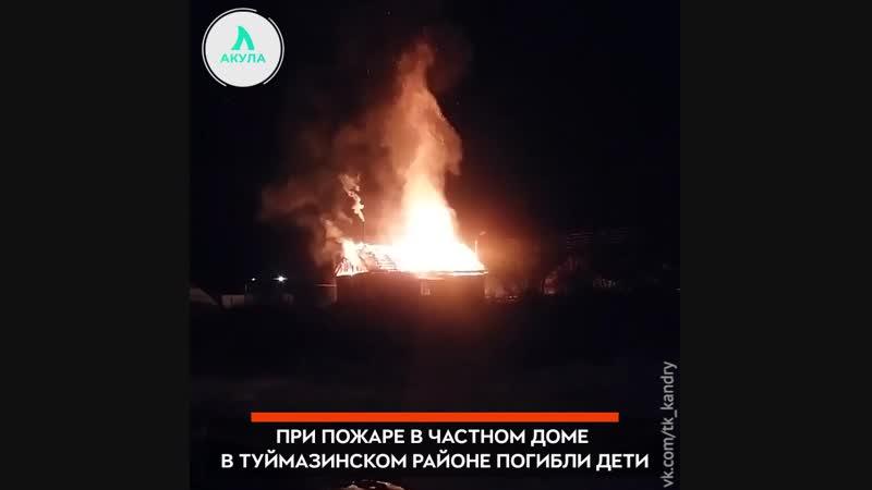 Трое детей погибли в пожаре | АКУЛА