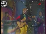 Виа Голубые гитары