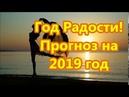 Год Радости Энергетический прогноз на 2019 год