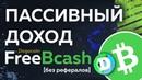 FreeBcash и Dogecoin Полная инструкция и стратегия Как заработать крипту даже БЕЗ РЕФЕРАЛОВ