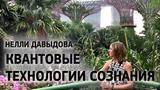 Квантовые Технологии Сознания - Нелли Давыдова