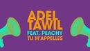 Adel Tawil feat Peachy Tu m'appelles Lyric Video