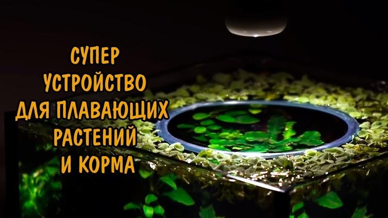 СУПЕР УСТРОЙСТВО ДЛЯ ПЛАВАЮЩИХ РАСТЕНИЙ И КОРМА. SUPER DEVICE FOR AQUATIC PLANTS
