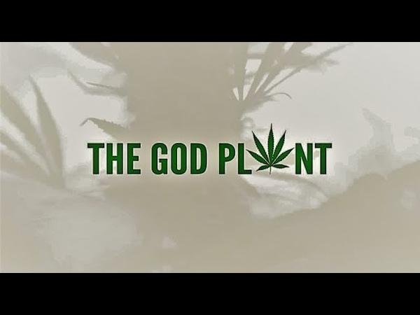 Документальный фильм Божественное растение The God Plant (2018)