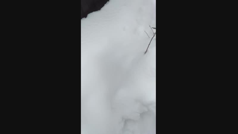 На улице лежит снег сугроб ❄❄❄❄❄❄❄