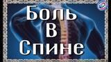 Как избавиться от многолетних болей в спине за одну неделю Алексей Федорович #всегранивселенной