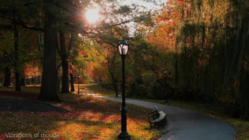 с Грустная музыка Пианино Осенние мотивы Sad melody of autumn