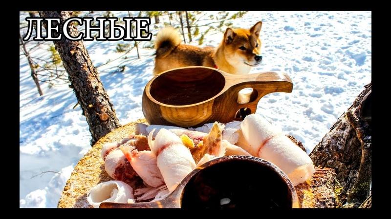 Дикая кухня - СТРОГАНИНА ИЗ РЫБЫ   BUSHCRAFT COOKING - FROZEN FISH
