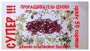 Проращивание СЕМЯН для ПОСАДКИ Проверка на ВСХОЖЕСТЬ ДЁШЕВО КОМПАКТНО БЫСТРО Germination of seeds