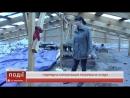 Підрядна організація, що ремонтувала покрівлю в костянтинівському дитячому садку «Усмішка» розірвала угоду з тамтешнім управлінн