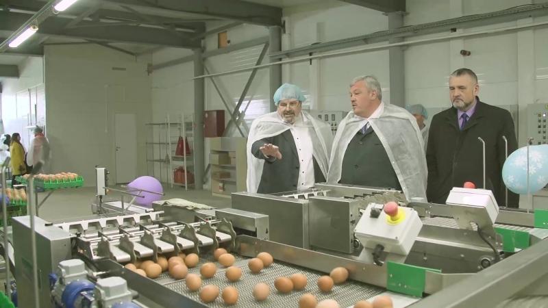 Посещение птицефабрики Зеленецкая