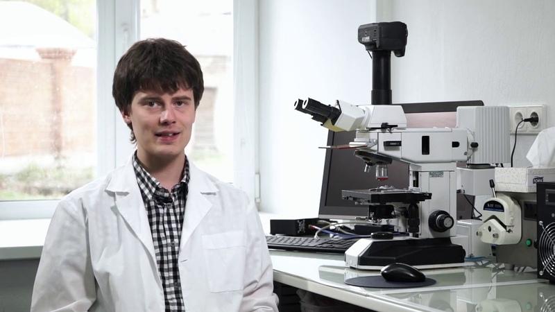 Умные микролампочки в байкальских рачках 13 В сетях иммунной системы