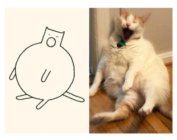 Коты и минимализм