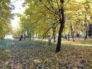 Борисовские пруды 3